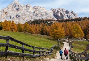 L'autunno sarà a colori in Alto Adige con escursioni, degustazioni e tanta avventura. Da metà settembre fino alla fine di ottobre,